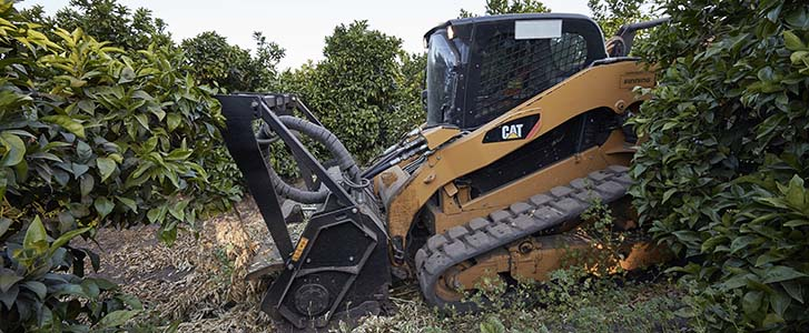 Cat Skid Steer with mulcher