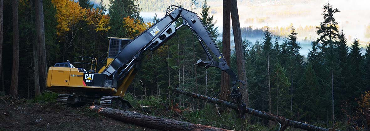 Finning Forestry Excavator with grappler and log